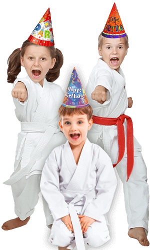 Martial Arts Birthday Party for Kids in Cypress TX - Birthday Punches Page Banner